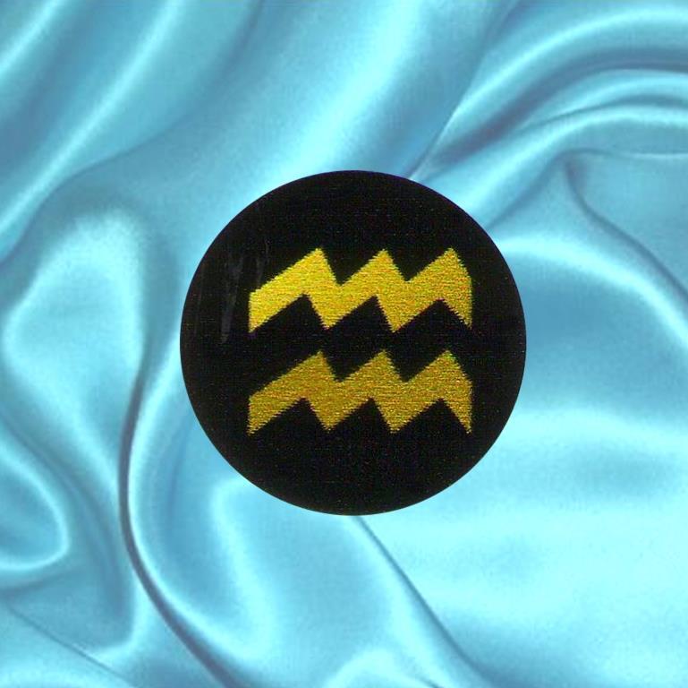 """Пластинка для сотового телефона знак Зодиака """"Водолей"""" из шунгита."""