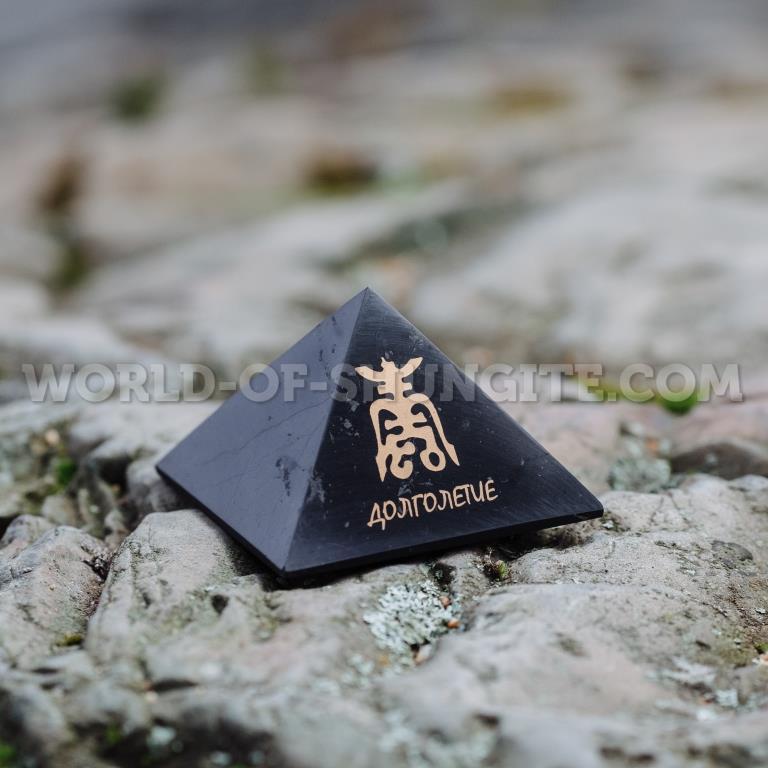 "Пирамида ""Долголетие"""